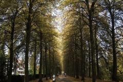 Die Promenade (Münster)